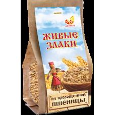 Хлопья Пшеничные пророщенные 300 гр Дивинка