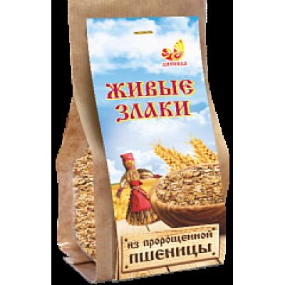 """Живые злаки Хлопья из пророщенной пшеницы 300 гр Дивинка  от Экомаркет """"Овсянка"""""""